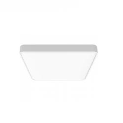 Потолочная лампа Xiaomi Yeelight Ceiling Light C2001S500 -500mm (YLXD038)